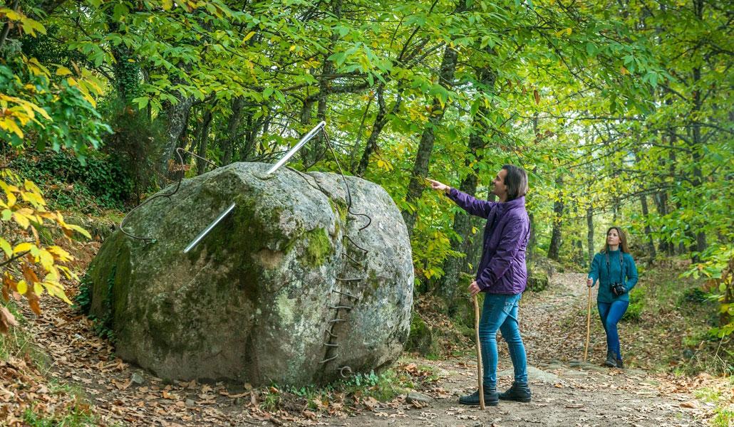 Los caminos del arte en la naturaleza