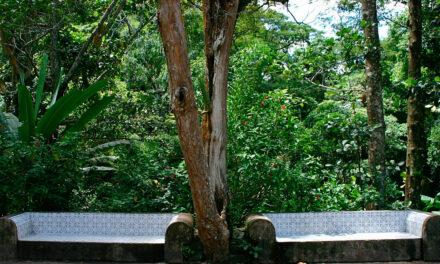Parques nacionales y ecoturismo en Brasil