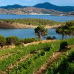 El valor de los paisajes agrícolas