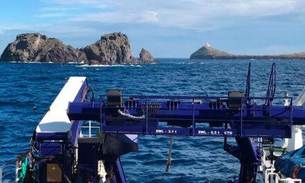 Proyecto LIFE Intemares en las Islas Columbretes
