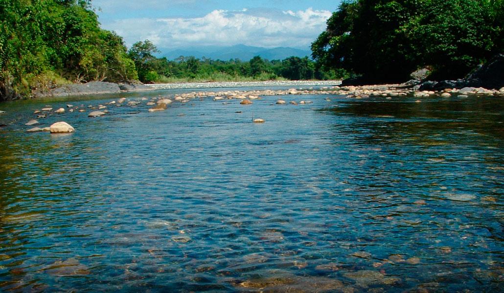 Biodiversidad acuática de la Amazonía en peligro