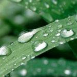 El futuro del agua es la seguridad hídrica